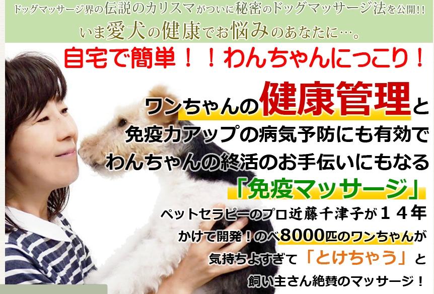 ワンちゃんがとけちゃうドッグマッサージ  近藤千津子 by 有限会社オーバルライズジャパンは詐欺かどうか